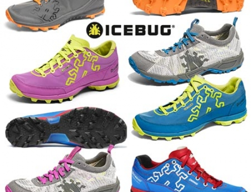 Choosing The Right OCR Shoes